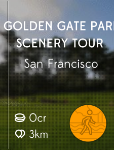 Golden Gate Park Scenery Tour