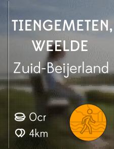 Tiengemeten, Weelde