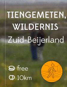 Tiengemeten, Wildernis
